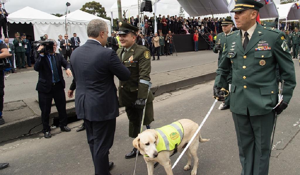 Militar, perros, caninos, antiexplosivos, minas antipersona, 20 de julio