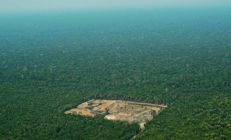 La Amazonía de Brasil se está perdiendo