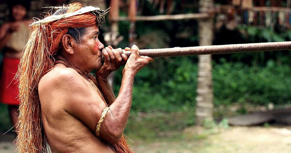 Los nativos del Amazonas están bajo fuerte ataque: ONG