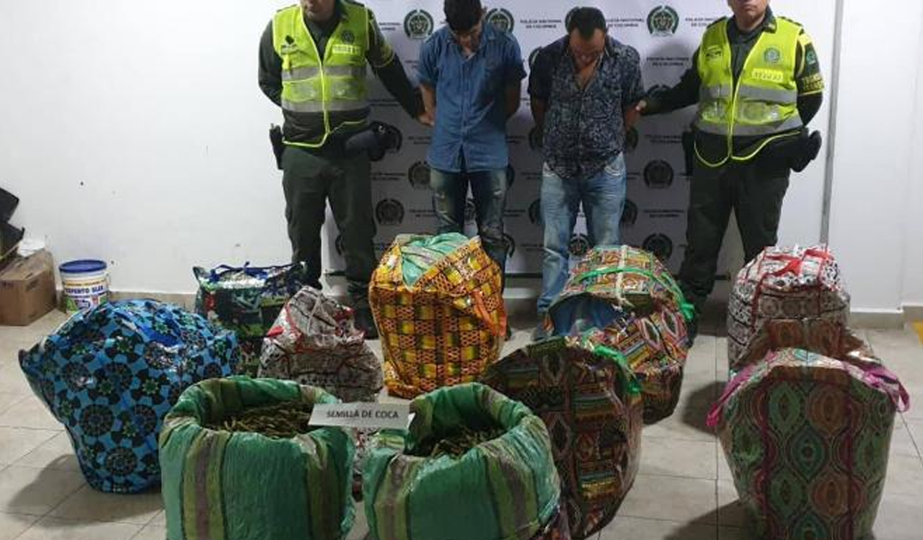 6400 tallos de coca decomisados en vía Pasto – Medellín