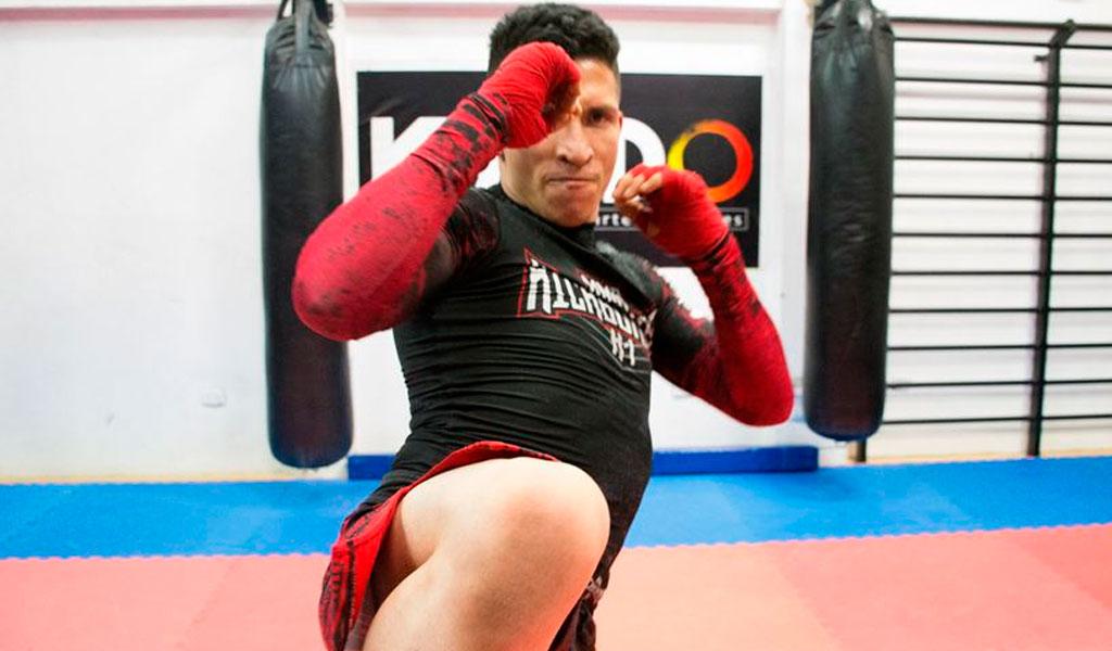 artes marciales mixtas