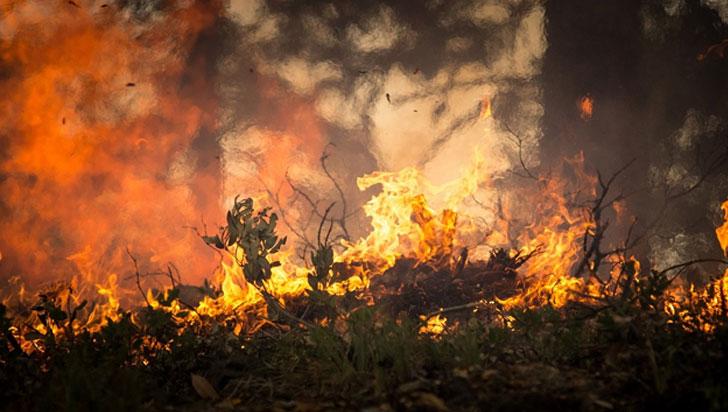 Autoridades colombianas atienden incendios en regiones