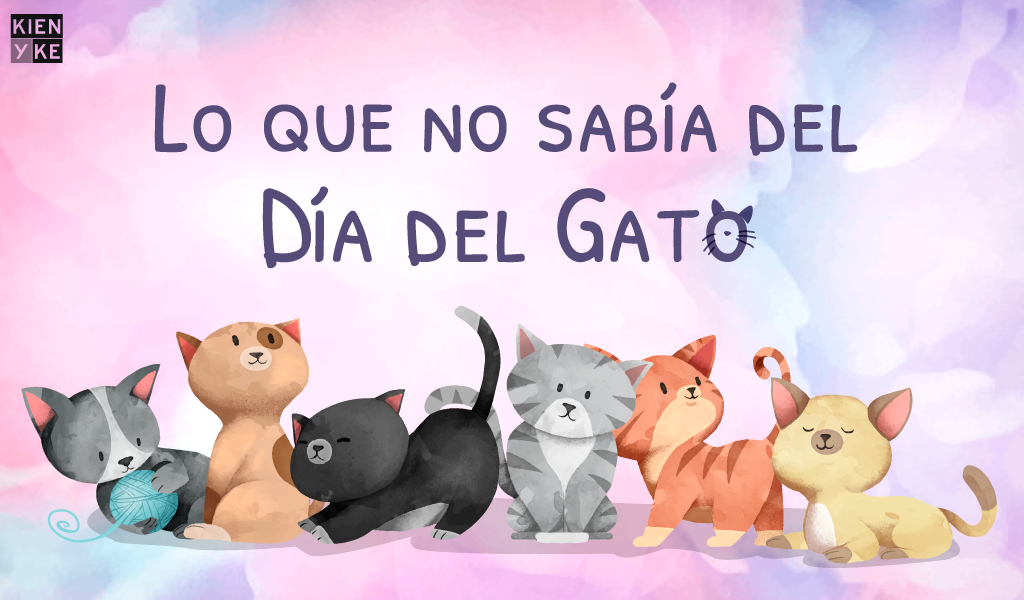 Lo que no sabía del día del Gato