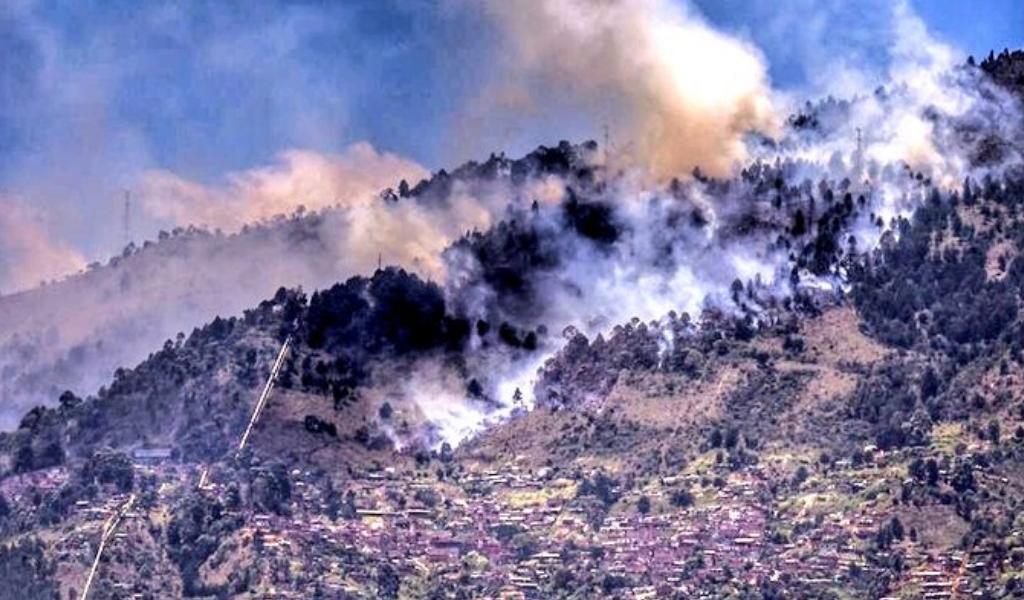 Incendio forestal en Itagüí por poco afecta unidad residencial
