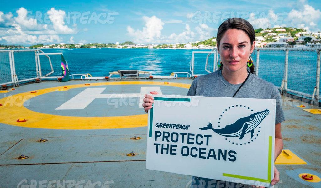 Océanos- Greenpeace