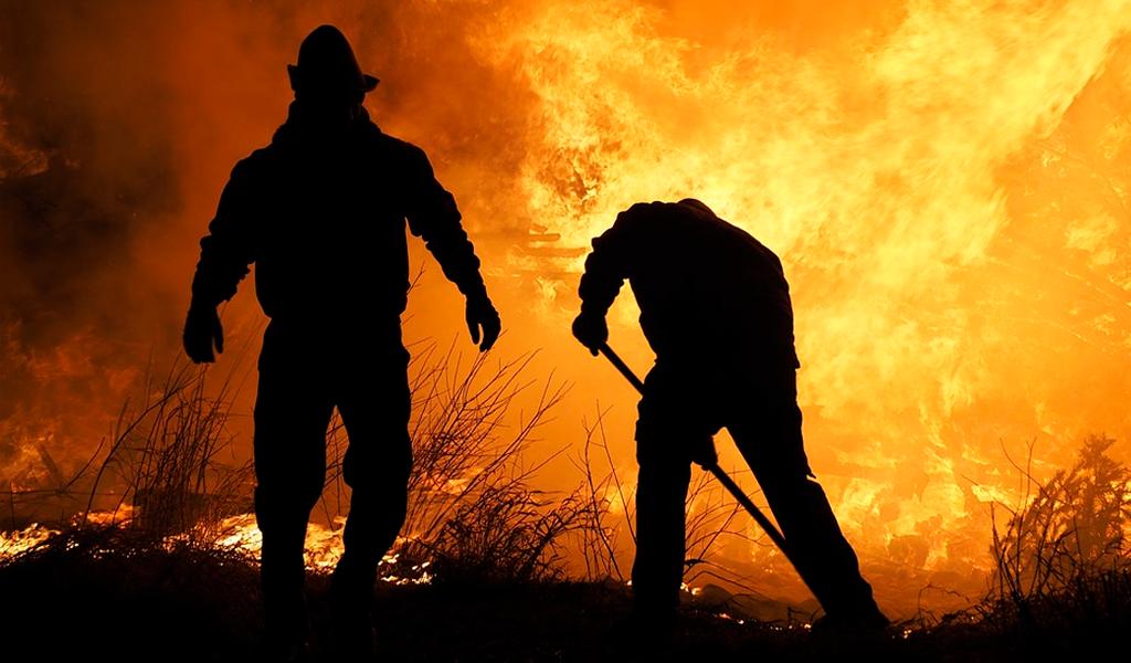 Consecuencias de los incendios forestales en Rusia