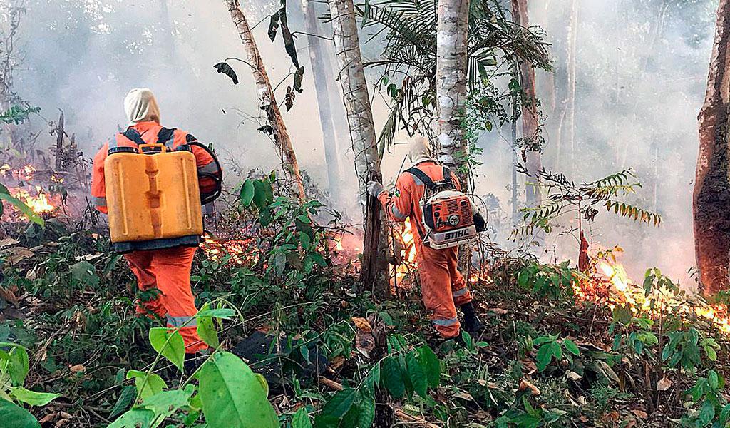 Colombia trabaja para evitar incendios en su territorio