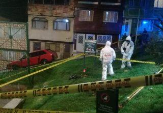 Buscan asesino serial de gatos al sur de Bogotá