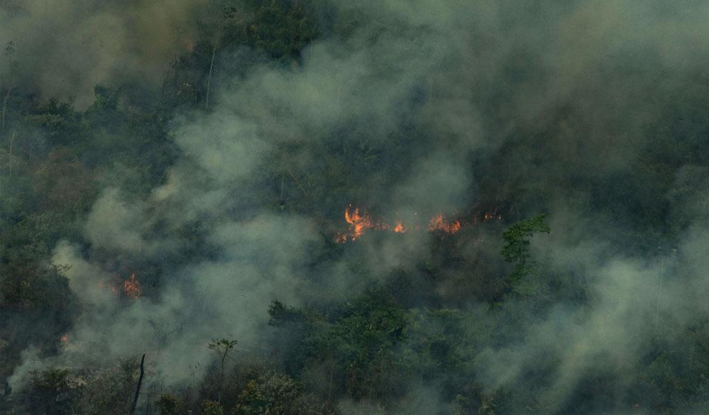 Más de 1.500 incendios están quemando el Amazonas