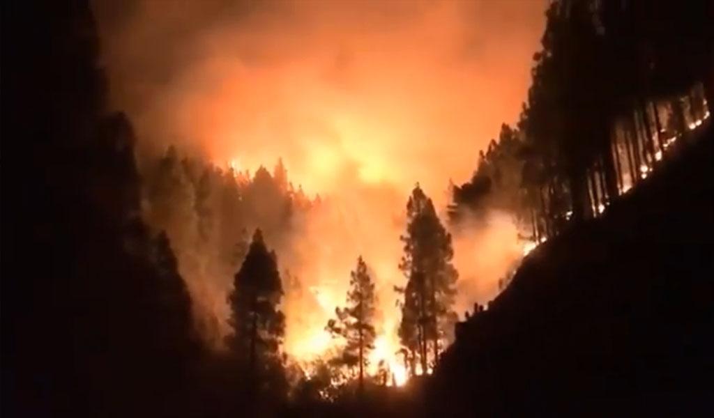 Incendio consume más de 1.000 hectáreas en Gran Canaria