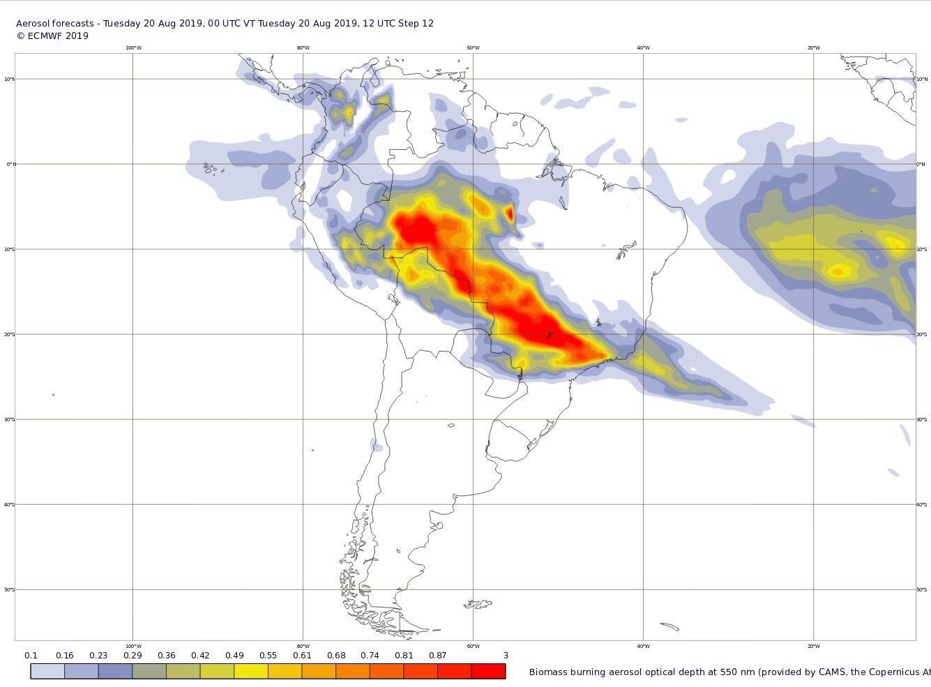 Bolsonaro culpa a las ONG de incendios en la Amazonía