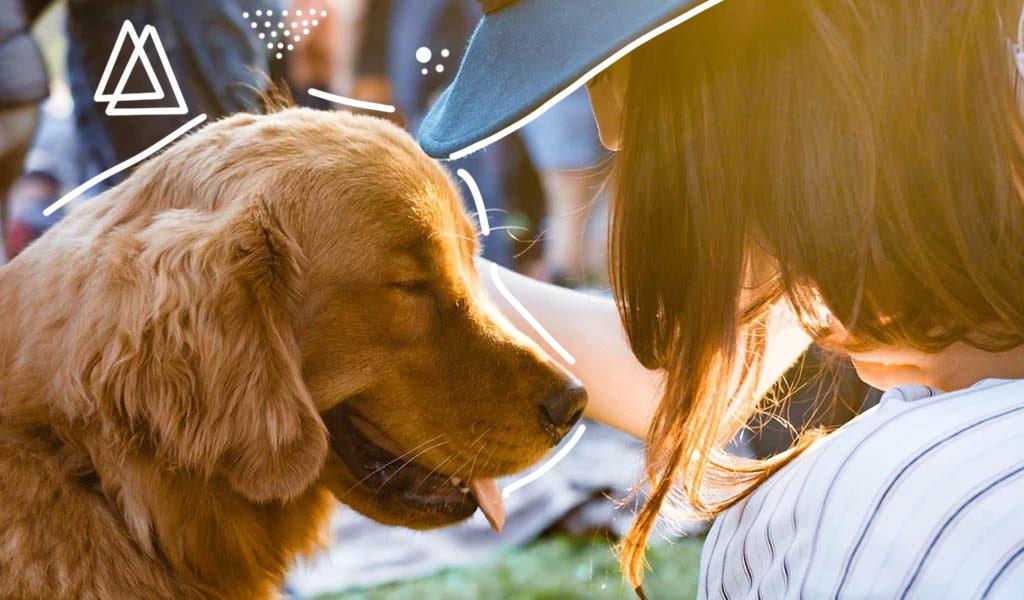 Consejos básicos para el cuidado de su mascota