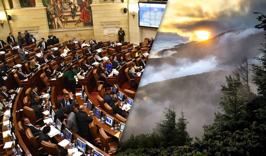 Proyecto de ley buscará mejorar el medio ambiente