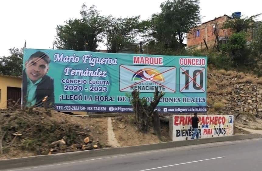 Talan árboles para instalar vallas políticas en Cúcuta