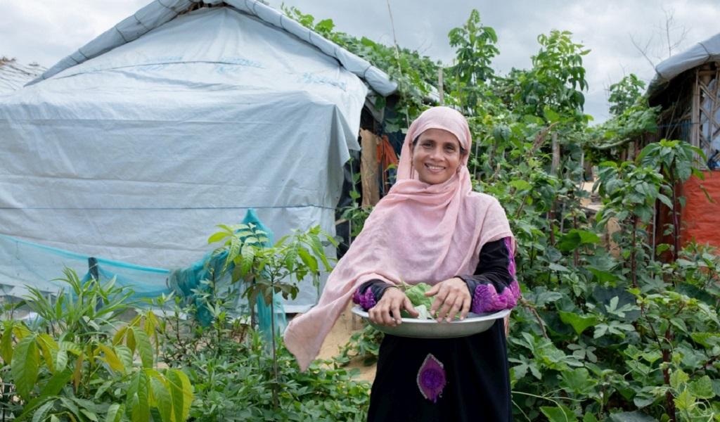 Personas refugiadas que luchan por el planeta