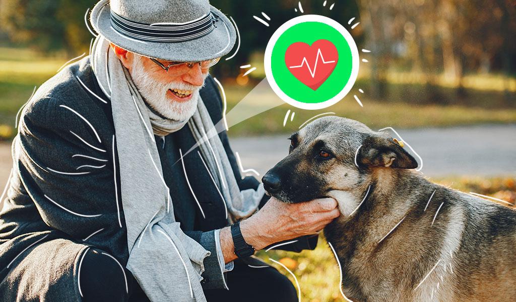 ¿Cómo una mascota mejora la vida de los adultos mayores?