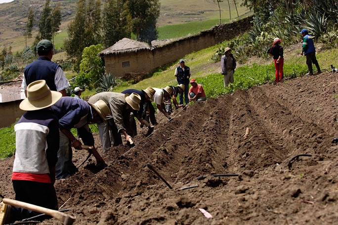 Colombia reitera a EE.UU. interés por admitir productos agrícolas