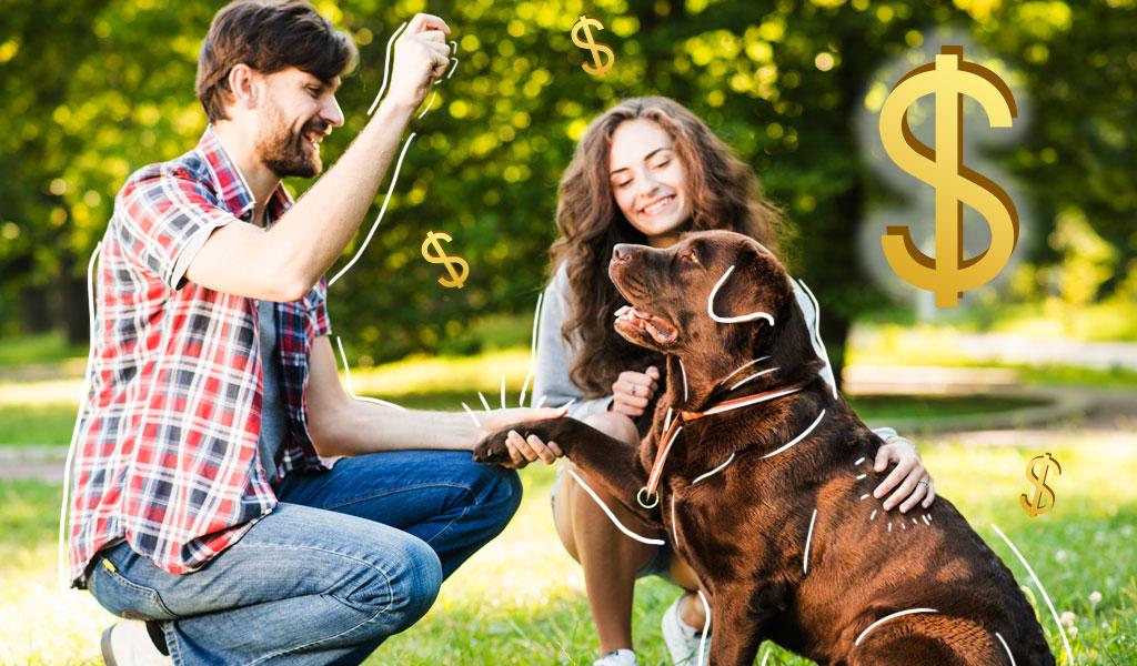 Millennials se endeudan por sus mascotas