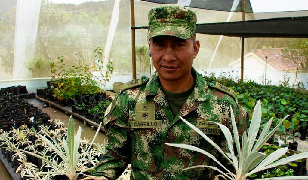 Páramos, Sumapaz, El Cocuy, Minería, Conflicto, Chingaza, Cundinamarca, Reforestadores, Ejército Nacional