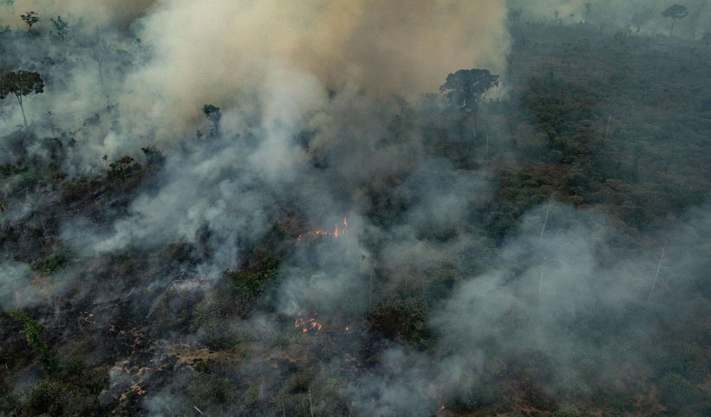 Incendios de la Amazonía no son naturales