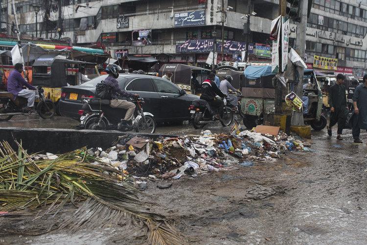 Una plaga de moscas invadió la ciudad más grande de Pakistán