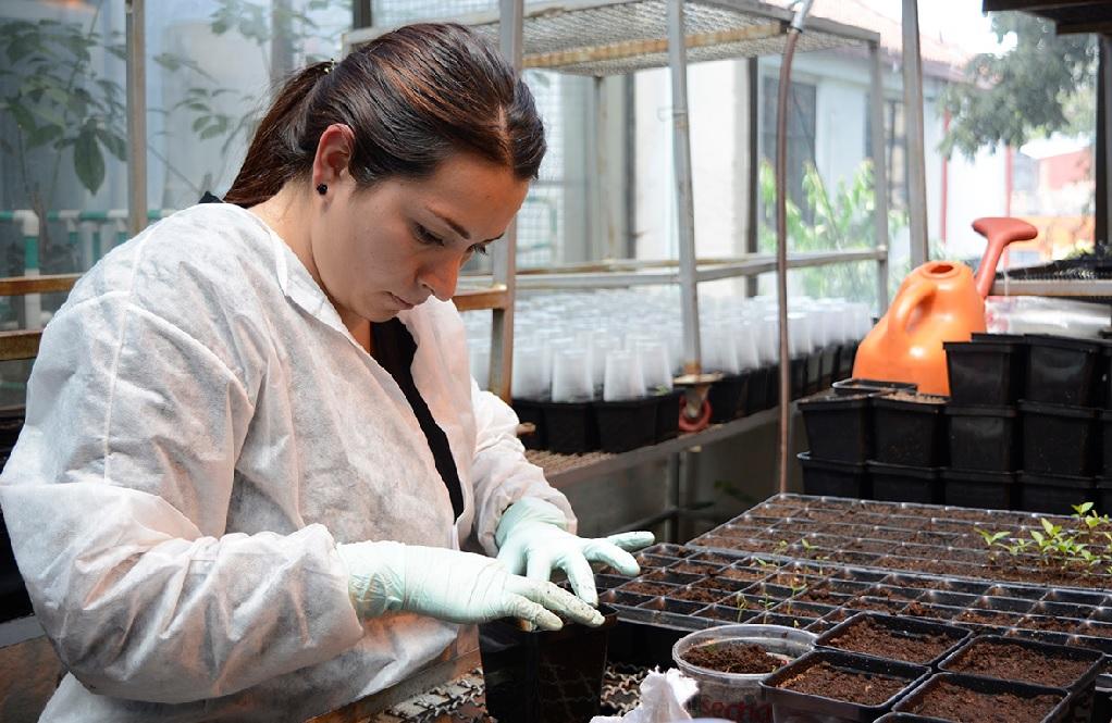 Convocatoria busca empresas para desarrollo de biotecnología