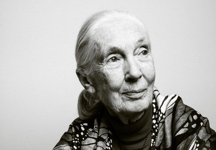 A los 85 años, Jane Goodall aún predica