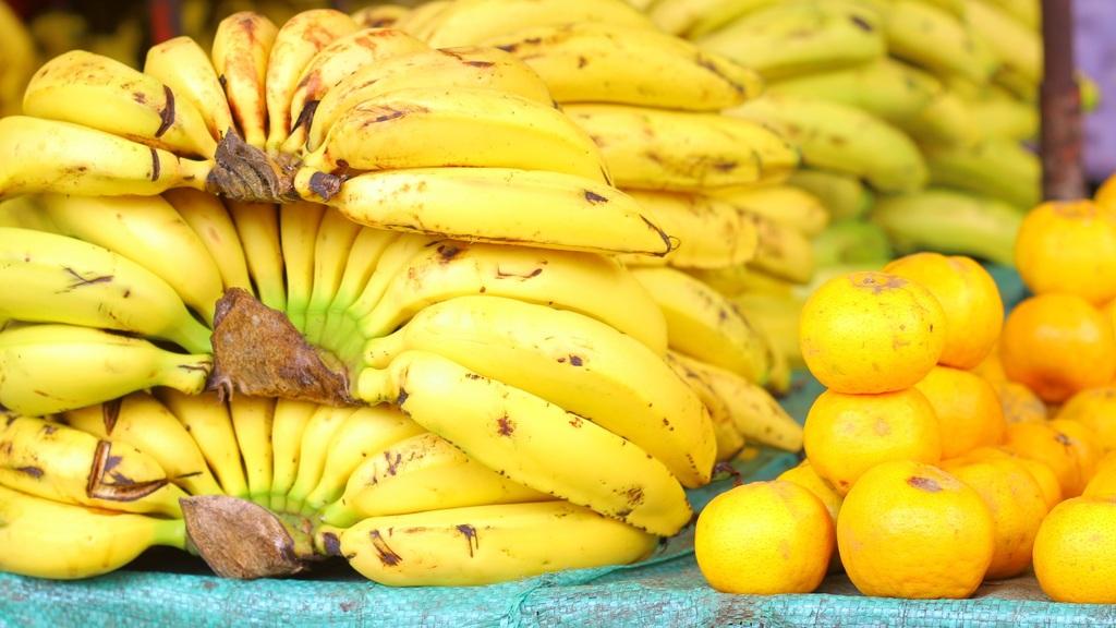 Colombia busca frenar grave expansión de hongo del banano