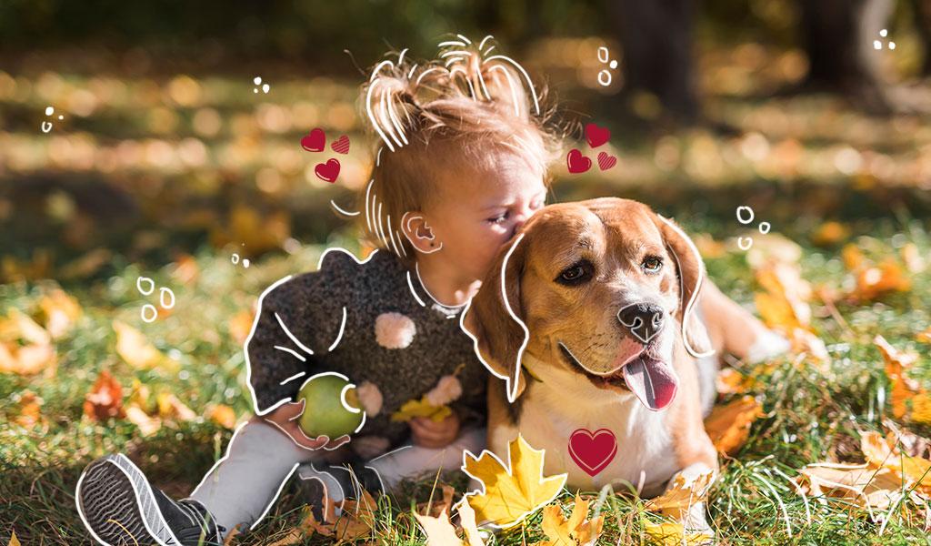 Las mascotas ayudan a reducir el estrés en los niños