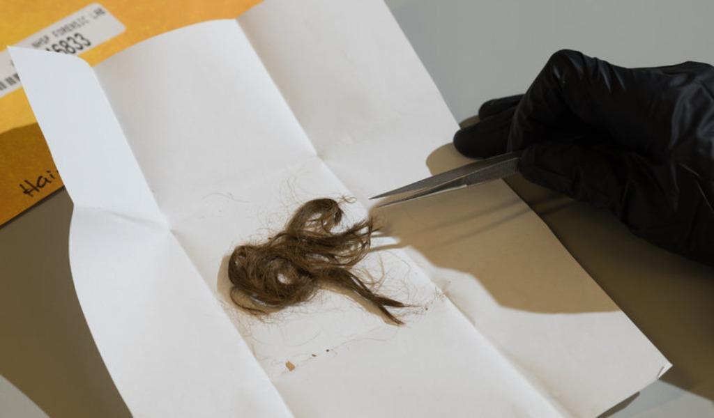 Analizan cabellos para investigar y resolver casos