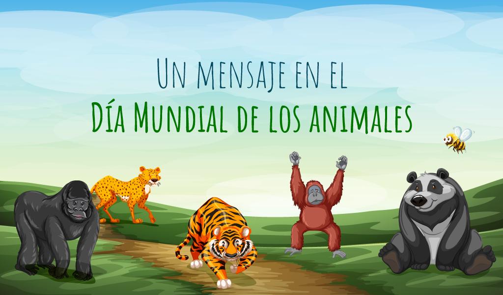 Un mensaje en el Día Mundial del los Animales