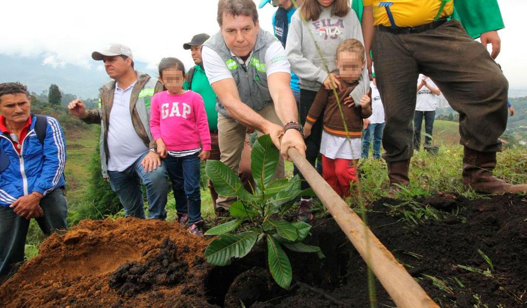 EPM plantará un millón de árboles en el Valle de Aburrá