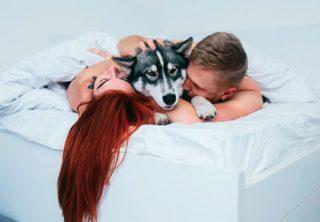 Dormir con la mascota es mejor que dormir en pareja