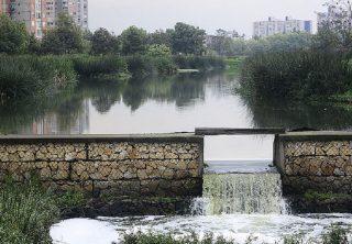 El Burro, un humedal cercado por la urbanización