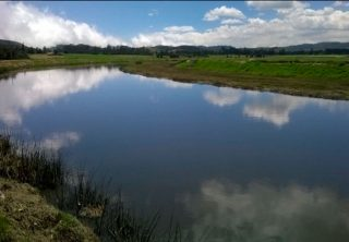 Estos son los resultados de la recuperación del Río Bogotá