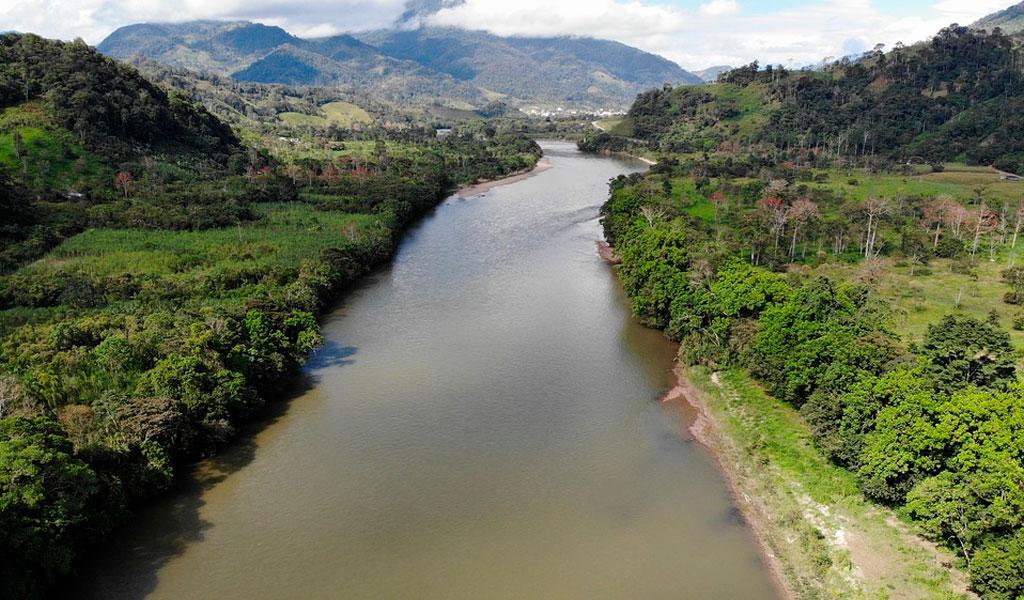 Países presentaron plan para proteger la Amazonía
