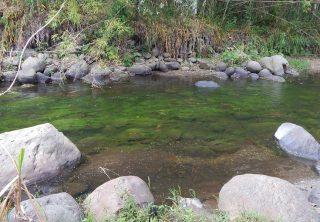 Río Quindío fue declarado sujeto de derechos