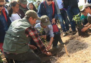 Siembran primeros árboles en la reserva Van der Hammen