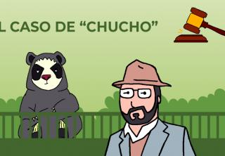 """El caso del oso """"Chucho"""""""