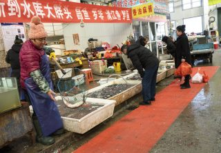 Los mercados chinos son un hervidero de nuevos virus