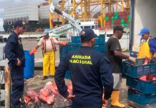 Autoridades incautan diez toneladas de pesca ilegal