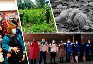 Coronavirus alerta a Suramérica y otras noticias
