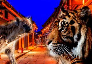 Prohiben en China comercio y consumo de animales salvajes